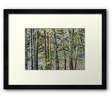 On either side of the river, watercolor on paper Framed Print
