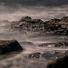 Alien Tides by George Davidson