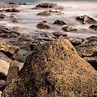 Stranger Tides by George Davidson