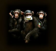 Speak no Evil, See no Evil, Hear no Evil. by Kirk Shelton