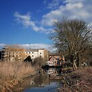 Parndon Mill by Nigel Bangert