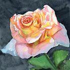 Courtyard Rose by Amy-Elyse Neer