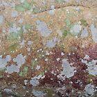 Appalachian Stonescape by Joshua Bales