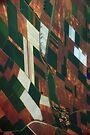 Patchwork Fields by Kasia-D