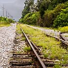 Standing By Me a Railroad Adventure by Casey Peel