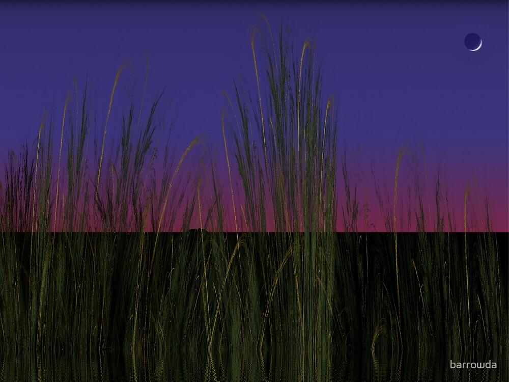 Tut58#2:  New Moon Over Marsh Reeds  (G1233) by barrowda