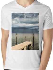 Pelican Pier St Petersburg Mens V-Neck T-Shirt