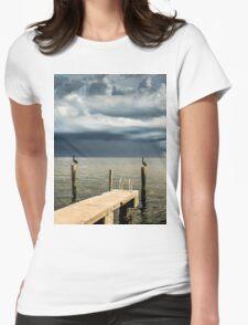 Pelican Pier St Petersburg T-Shirt