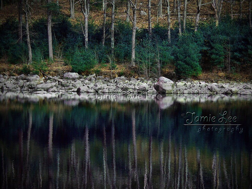 The Pine Line by Jamie Lee