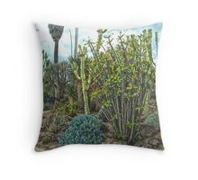 Cactus garden at the Huntington Library. Throw Pillow