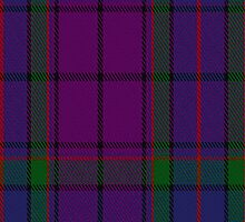 02059 Wardlaw Clan/Family Tartan Fabric Print Iphone Case by Detnecs2013