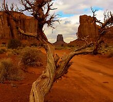 Lone Tree by Gina Dazzo