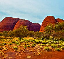 The Olgas, Ayers Rock Australia by Doug Cliff