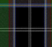 02068 Webster Clan/Family Tartan Fabric Print Iphone Case by Detnecs2013