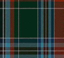 02069 Wedding Dress (1776) Tartan Fabric Print Iphone Case by Detnecs2013