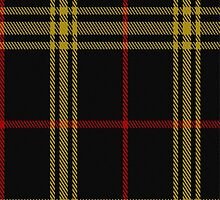 02080 Welsh National #3 District Tartan Fabric Print Iphone Case by Detnecs2013