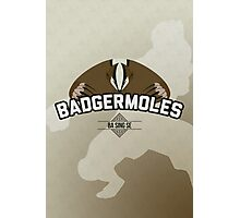 Ba Sing Se Badgermoles Photographic Print