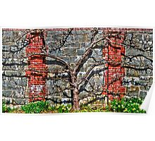 Espalier Apple and Daffodils, Please . . . Poster