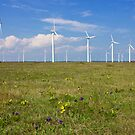 Wind Generators over Blue Sky  by kirilart