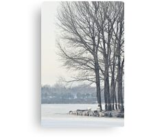 freezing and quiet winter at Old Summer Palace, Beijing Canvas Print