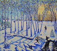 Winter sunset by Tomkam