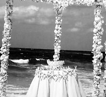 BEACH WEDDING WISHES TO MY TWIN by dagokid