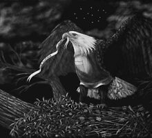 American Eagle by Heather Ward