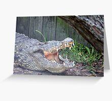 Gator 1 Greeting Card