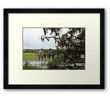 Rice Plantation Framed Print
