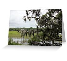 Rice Plantation Greeting Card
