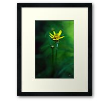 There's A Secret World Framed Print