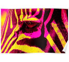 """Zebra Eye"" Colorful Zebra Abstract Poster"
