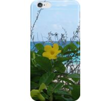 Yellow Beach Flower iPhone Case/Skin