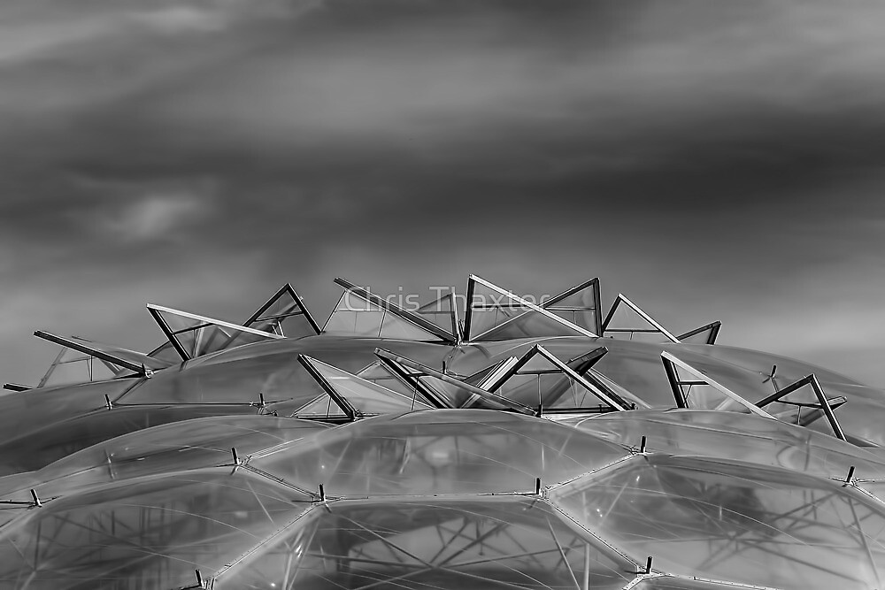 Eden Project Roof 2 Black and White by Chris Thaxter