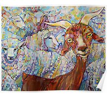 Goat/sheep painting - 2014 Poster