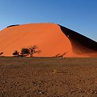 Dune 45 - Namibia - West Africa by aidan  moran