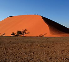 Dune 45 - Namibia - West Africa by aidan  moran