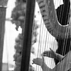 HARP ENTHUSIAT GREETING CARD by dagokid
