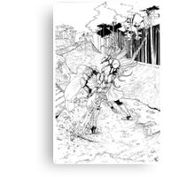Fight by the waterfall Canvas Print