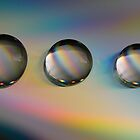 cd droplets by gmws