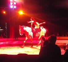 Zippos Circus/Horse Riding II -(160413)- Digital photo/FujiFilm FinePix AZ350 by paulramnora