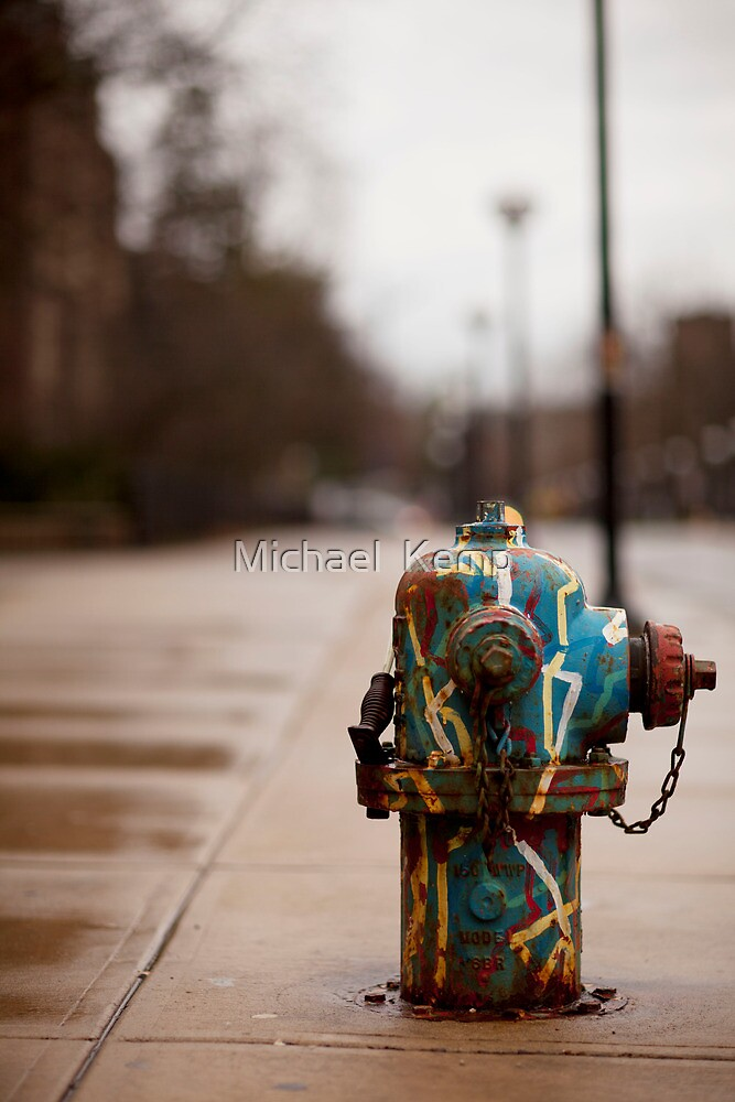 Colored Fire Hydrant by Michael  Kemp