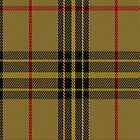 02102 Wilbers Tartan Fabric Print Iphone Case by Detnecs2013