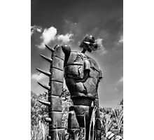Sky soldier Photographic Print