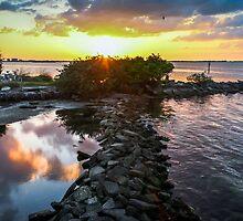 Dunedin Marina Sunset by Mikell Herrick