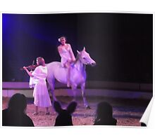 Zippo's Circus/Violin/Horse rider/Acrobat -(150413)- Digital Photo/FujiFilm FinePix AX350 Poster