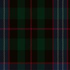 02108 Williamson/Smart Tartan Fabric Print Iphone Case by Detnecs2013