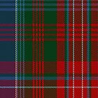 02112 Wilson (Janet) #2 Clan/Family Tartan Fabric Print Iphone Case by Detnecs2013