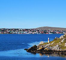 The Falkland Islands - Port Stanley by Geoffrey Higges