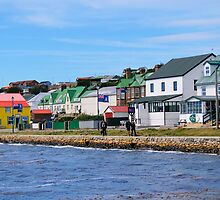 Stanley, capital of the Falkland Islands by Geoffrey Higges